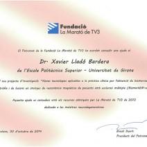 #MaratoTV3